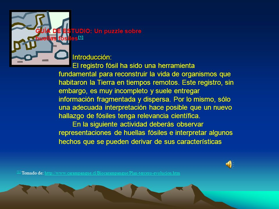 GUÍA DE ESTUDIO: Un puzzle sobre huellas fósiles[1]